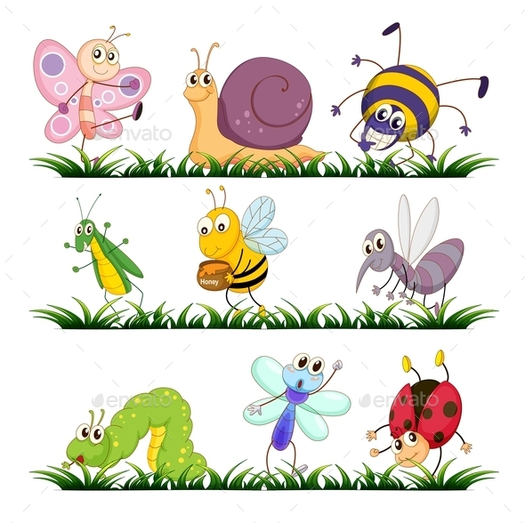 Bug Series - Animals Characters