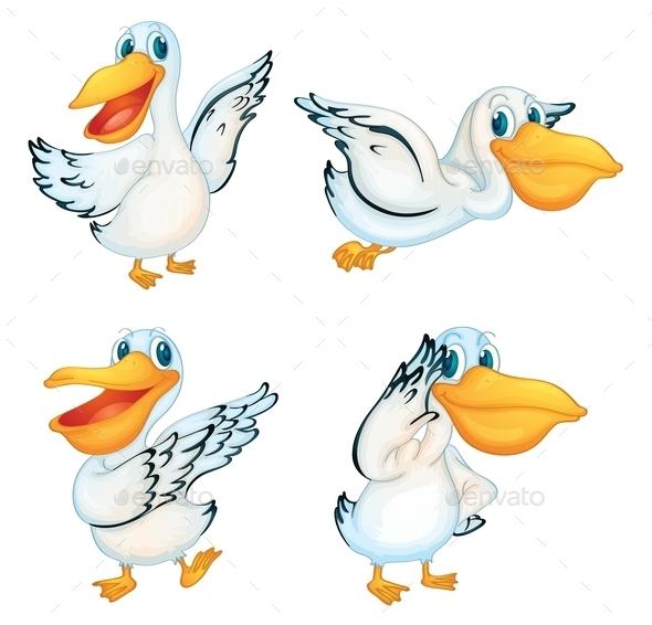 Pelican Series - Animals Characters