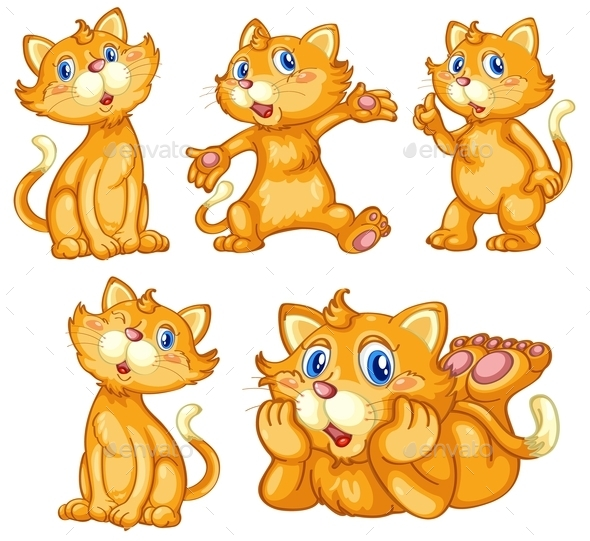 Cat Set - Animals Characters