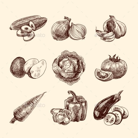 Vegetables Sketch Set - Food Objects