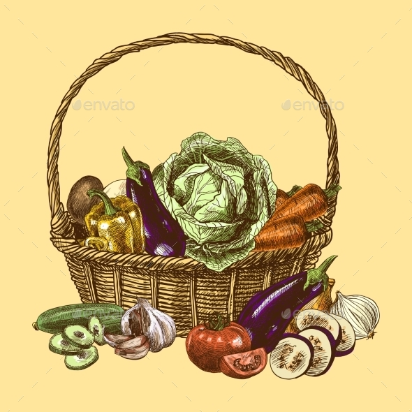 Vegetables Sketch Color - Food Objects