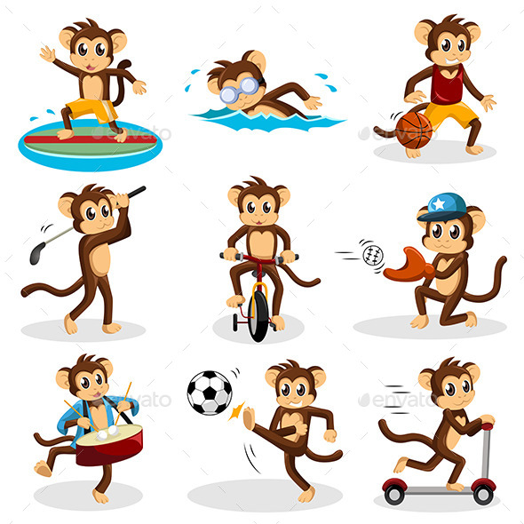 Monkey doing Activity - Animals Characters