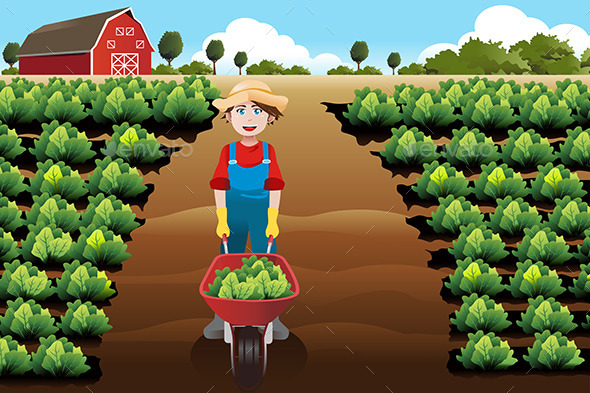 Boy working in a Vegetable Farm - People Characters