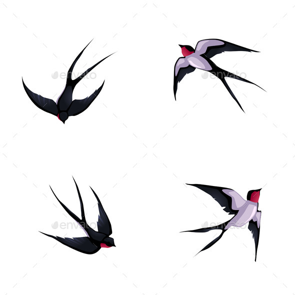Four Swallows - Animals Characters