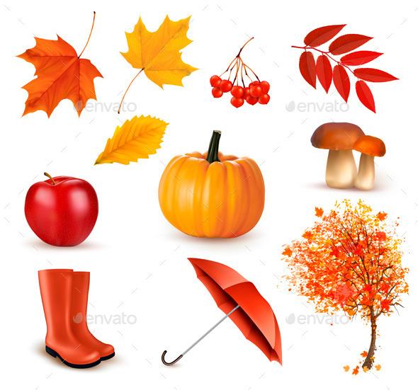 Autumn Themed Elements - Objects Vectors