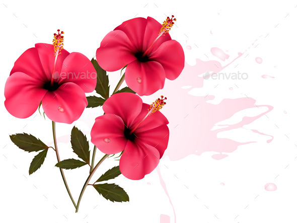 Three Pink Flowers Background - Flowers & Plants Nature