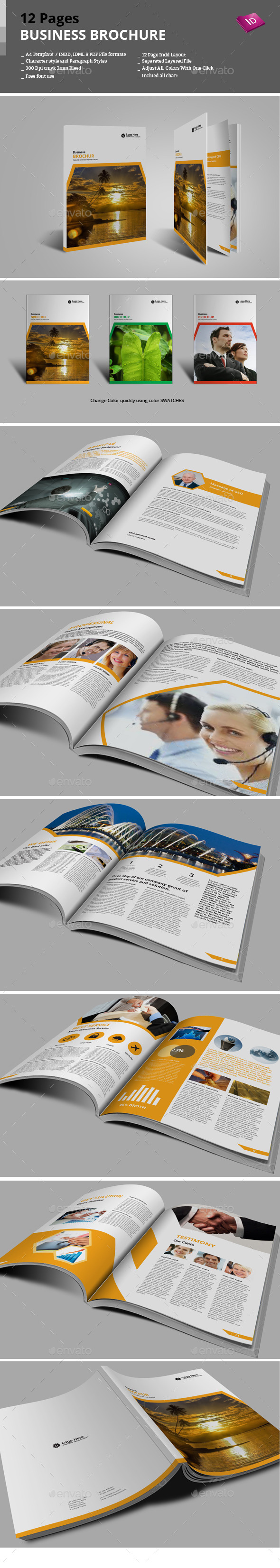12 Pages Business Brochure - Corporate Brochures