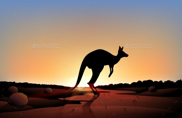 A Sunset with a Kangaroo - Animals Characters