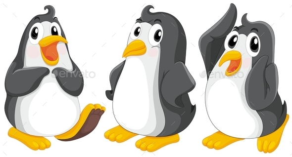 Penguins - Animals Characters