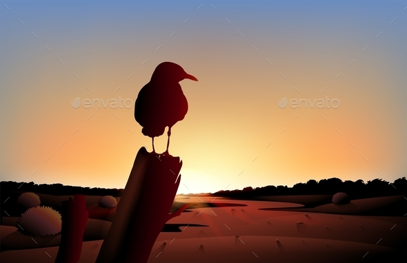 Sunset View on Desert with Bird - Animals Characters