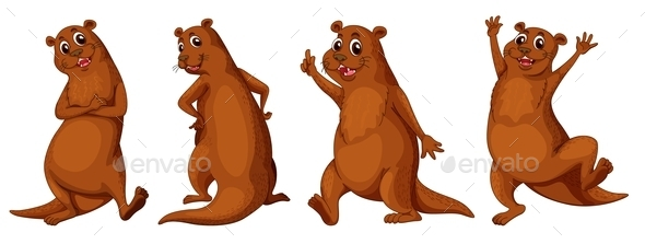 Otter - Animals Characters
