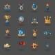 Award Flat Icons Set