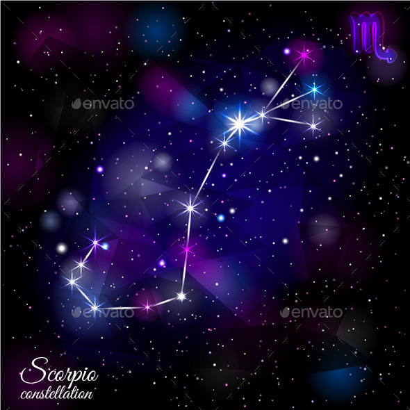 The 12 Zodiacal Constellations - Nature Conceptual