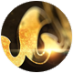 Download Golden Logo from VideHive