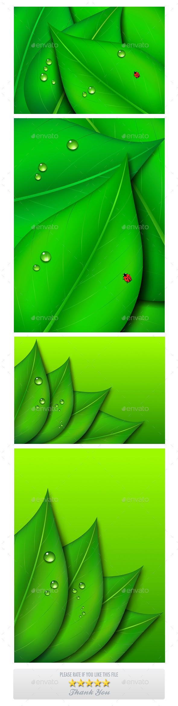Green Leaf Backgrounds - Backgrounds Decorative