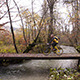 Biking In Autumn Forest - VideoHive Item for Sale