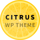 Citrus - One Page Multi-Purpose Theme - ThemeForest Item for Sale
