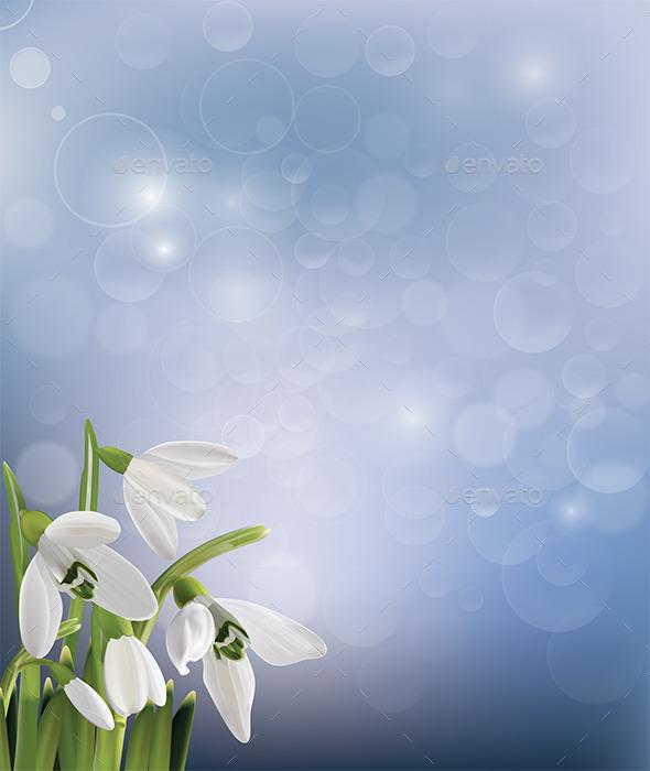Spring Snowdrop Flowers on Blue Background - Flourishes / Swirls Decorative