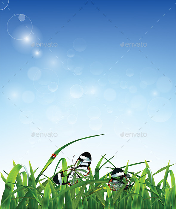 Grass Butterfly and Ladybug - Backgrounds Decorative