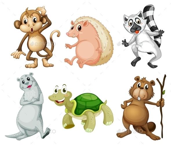 Wild Animals - Animals Characters