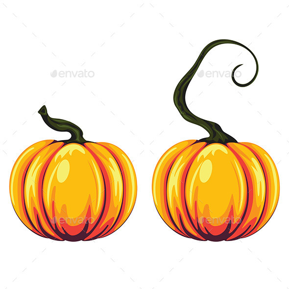 Pumpkin Illustration - Food Objects