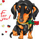 Dachshund with Red Flower - GraphicRiver Item for Sale