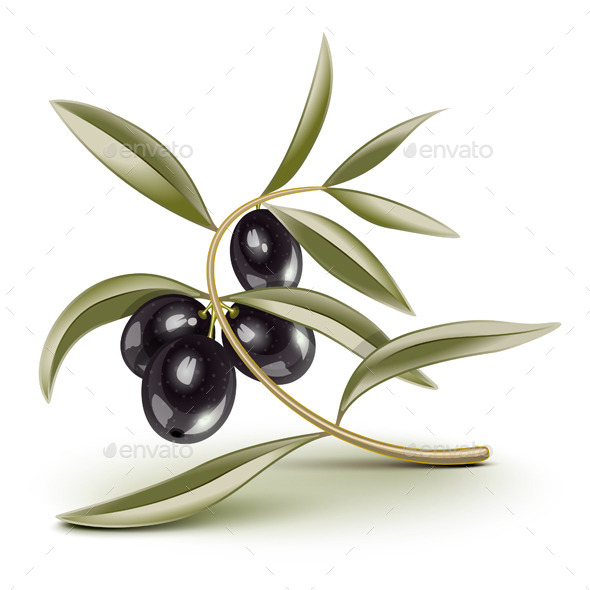 Black Olives Branch - Food Objects