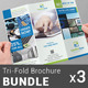 Multipurpose Tri-fold Brochure Bundle | Volume 1 - GraphicRiver Item for Sale