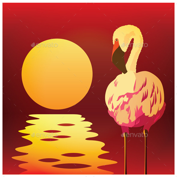 Flamingos at Sunset - Animals Characters