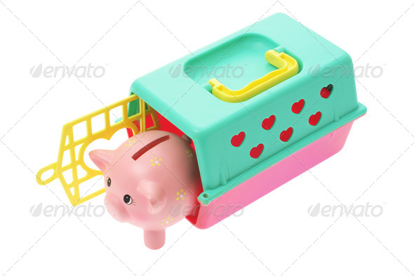 Piggybank in Plastic Box - Stock Photo - Images