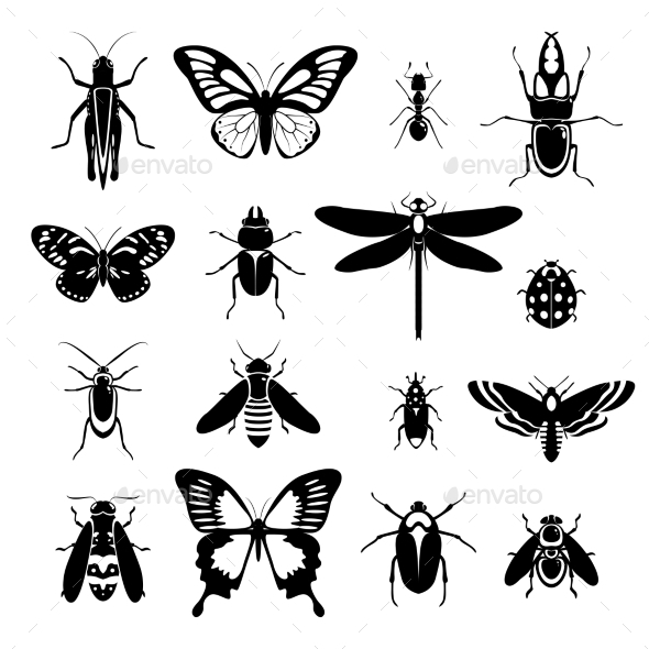 Insects Icons Set Black and White - Animals Characters