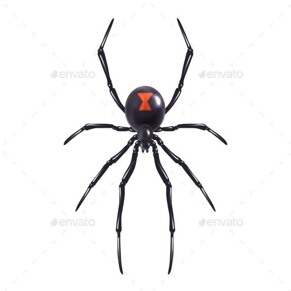 Spider - Tattoos Vectors