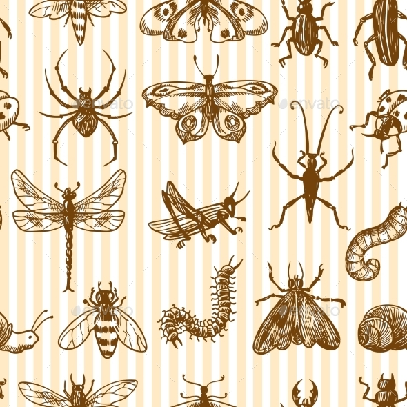 Insect Pattern - Backgrounds Decorative