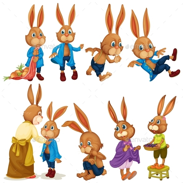 Rabbit Set - Animals Characters