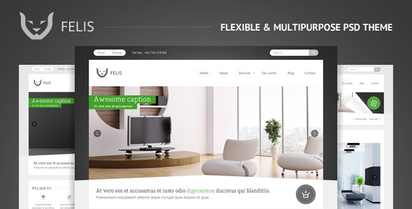 Free Download Felis - Flexible & Multipurpose PSD Theme Nulled Latest Version