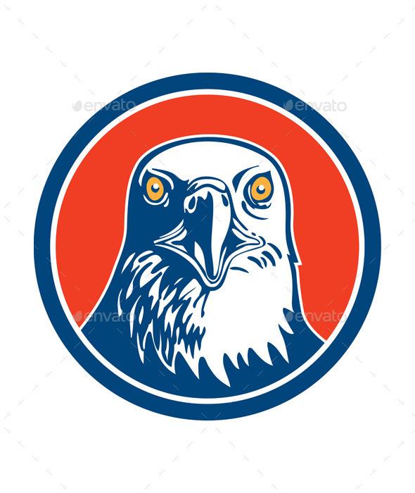 American Bald Eagle Head  - Animals Characters