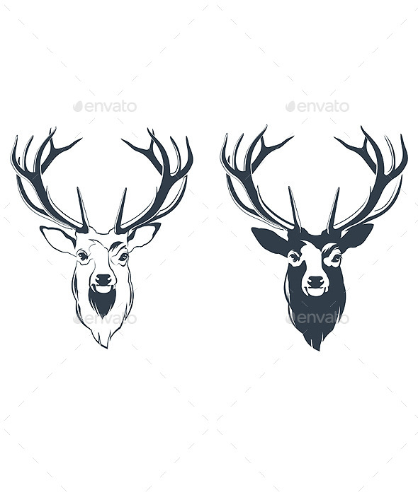 Male Red Deer Head - Animals Characters