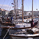 Sailboats - VideoHive Item for Sale