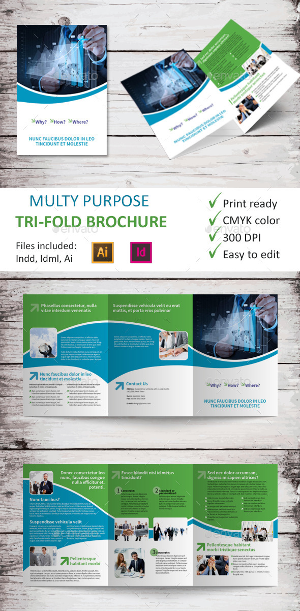 Multy Purpose Tri-Fold Brochure - Brochures Print Templates