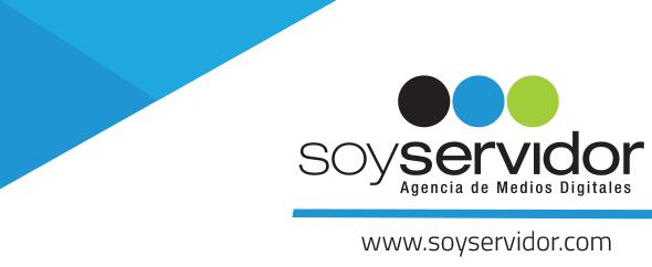 Logo ss themes