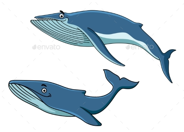 Blue Whales Swimming Underwater - Animals Characters