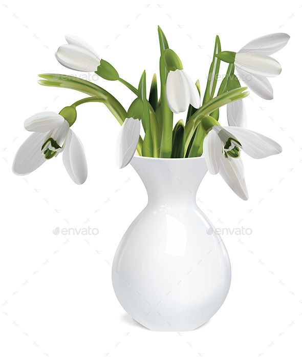 Bouquet of Snowdrops in a Vase - Flowers & Plants Nature