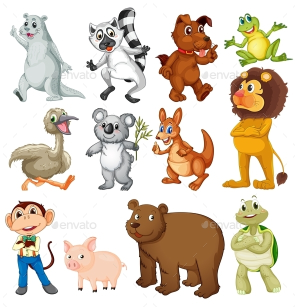 Land Animals - Animals Characters