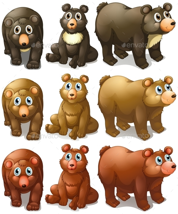 Collection of Bears - Animals Characters