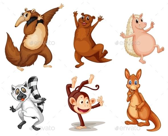 Mixed Animals  - Animals Characters