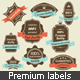 Vintage Premium Quality and Satisfaction Labels - GraphicRiver Item for Sale