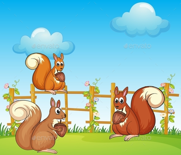 Squirrels at the Garden - Animals Characters