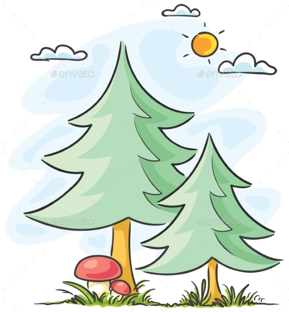 Fir-Trees and Mushrooms - Nature Conceptual