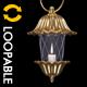 Fantasy Lantern - Golden Flower - VideoHive Item for Sale