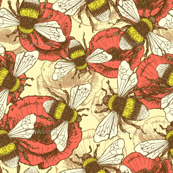 Sketch Bee and Poppy in Vintage Style - Flowers & Plants Nature
